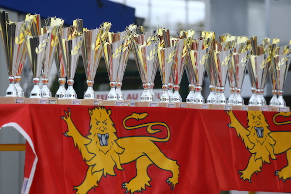 Les championnats de Ligue en Belgique Italie Allemagne Espagne
